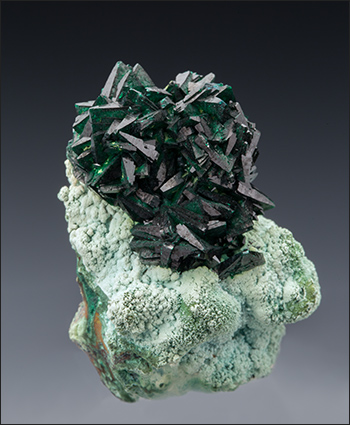 Malachite on Chrysocolla Congo miniature