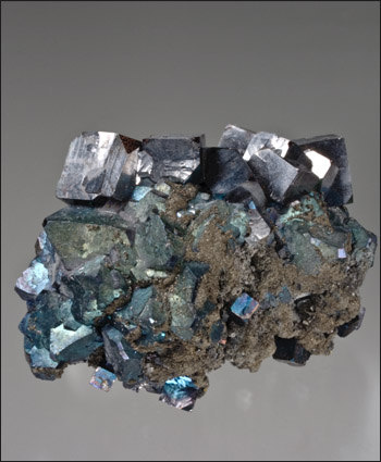 Galena with Bornite overgrowth and pyrite West Fork Mine Missouri small cabinet