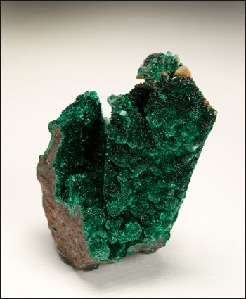 malachite pseudomorph after azurite Milpillas Mine Mexico miniature