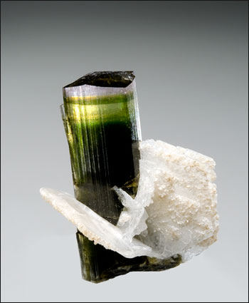 tourmaline with albite Stak Nala miniature gemmy