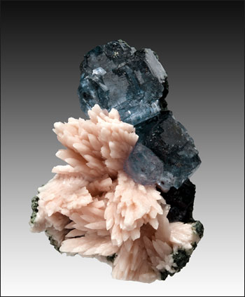 fluorite on Mn Calcite San Antonio Mine Mexico small cabinet
