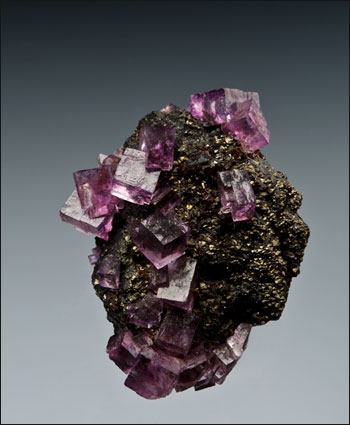 purple fluorite on sphalerite Elmwood Mine Tennessee miniature